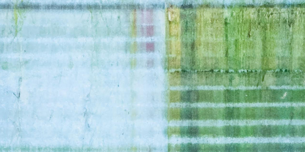 colin-Header-NL