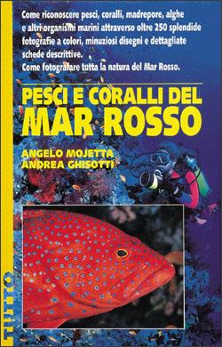 Pesci e coralli del Mar Rosso