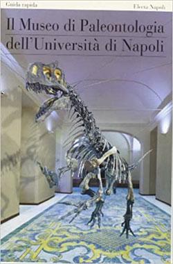 Il museo di paleontologia dell'Università di Napoli