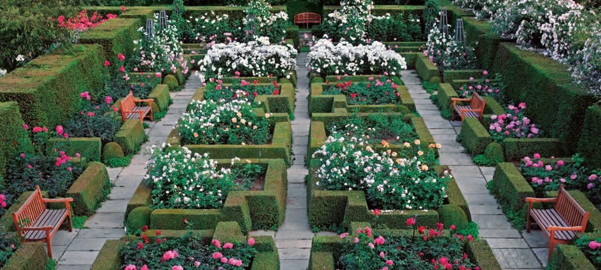 I miei giardini
