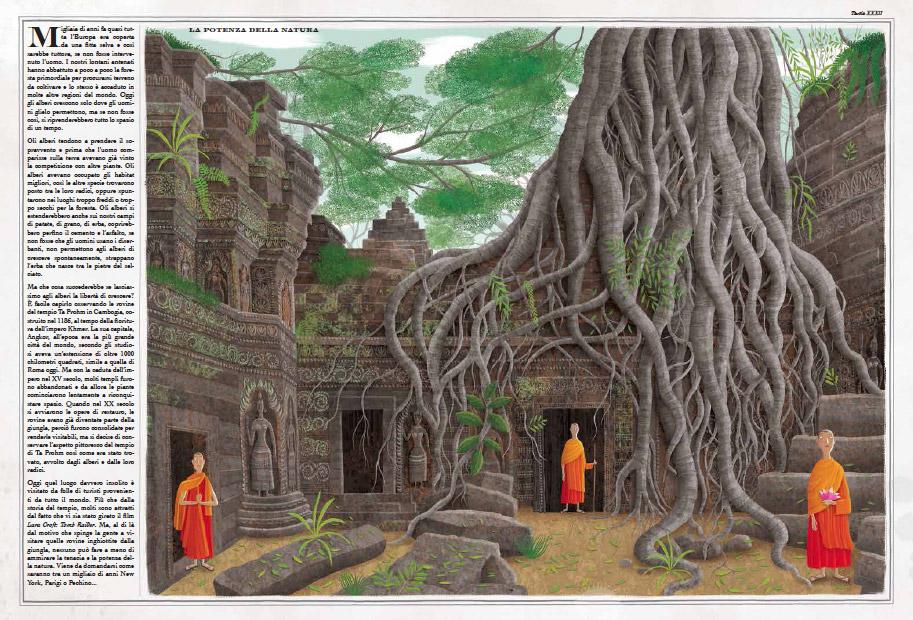 Il regno degli alberi