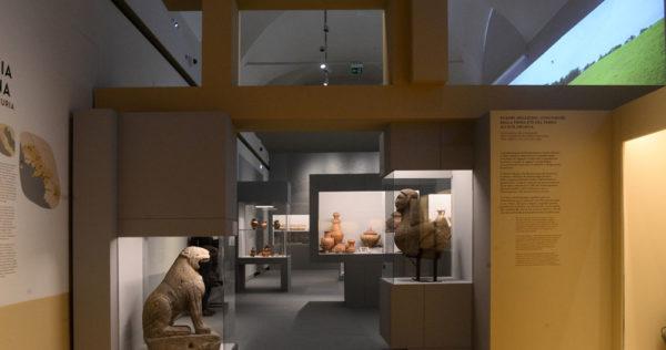 Etruschi, dentro la mostra 02, ph. Roberto Serra per Electa