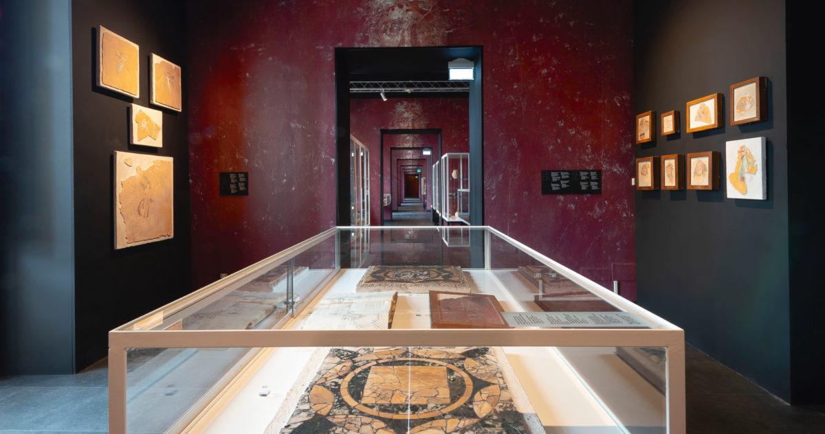 Apre il nuovo Museo Archeologico di Stabiae